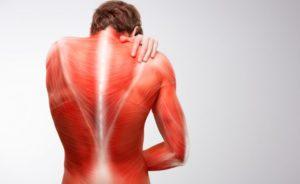 Imagem representando dor nas costas. Dor muscular